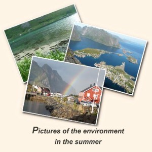 Pictures of Summer
