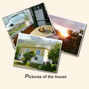 Pictures of the hause